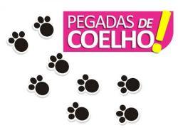 Adesivo Patinhas de Coelho - 50 UNIDADES